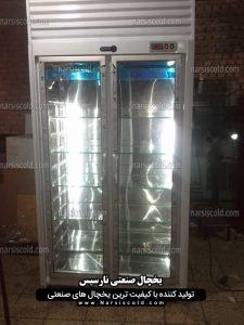 یخچال مخصوص نگهداری دارو 2 درب